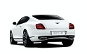 bentley-continental-supersports-biofuel-1